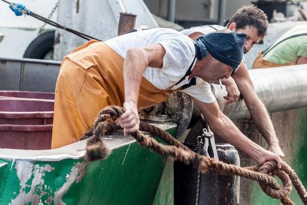 Al Mandracchio di Ancona arriva il pesce di Rosella Centanni