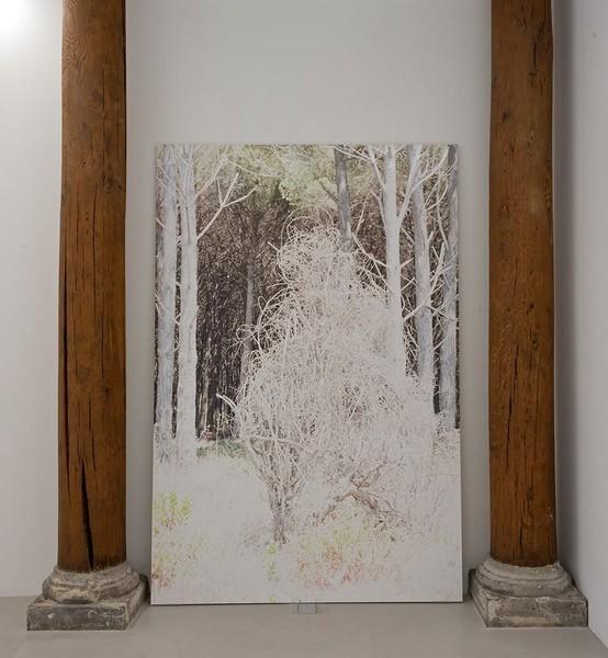 mostra Chantal Vey Pasolini