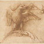 Andrea Mantegna, Uccello appollaiato su un ramo con frutto, anni sessanta del XV secolo