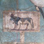 Affresco con il toro Apis, Casa del Frutteto, Pompei