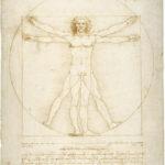 Leonardo da V., Uomo vitruviano, Venezia