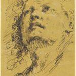 Pier Antonio Novelli, Testa di giovane che guarda in alto, anni settanta del XVIII secolo