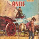 _ande-1.jpg