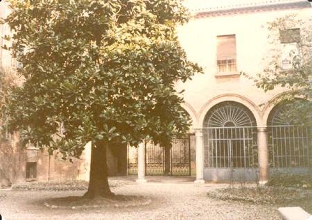 La magnolia di casa Bassani a Ferrara