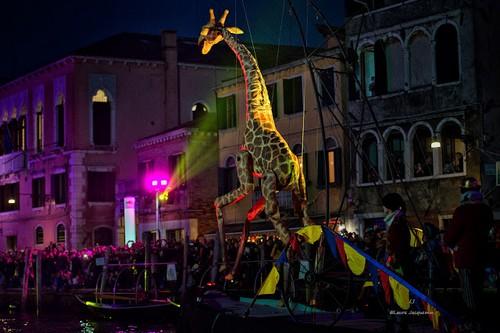 _la_festa_veneziana_sull_acqua_carnevale_di_venezia_laure_jacquemin_10_.jpg
