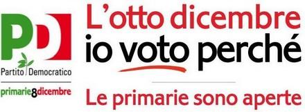 banner-primarie-pd-2013.jpg