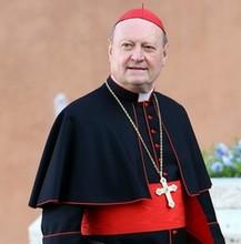 Il Cardinale Ravasi