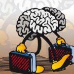 cervelli-oin-fuga.jpg