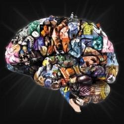 cognitivescience-2.jpg