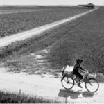 La rielaborazione al pc di questa foto di Donzelli è a cura di Franco Sandri (A.I.R.F.)