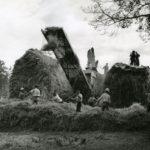 Italiens dans l'agriculture du Sud-Ouest - Dépiquage au Mousse, Gers 1946. © Jean Dieuzaide