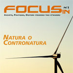 focus-2.jpg