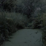 le_jardin__04.jpg
