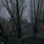 le_jardin__14.jpg