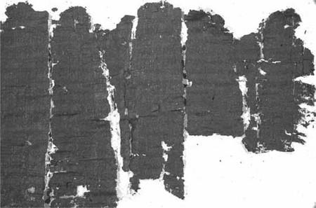 Un papiro della villa dei Pisoni (o dei Papiri)