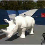 rinoceronte-venezia_1_.jpg