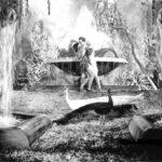 una-scena-di-metropolis-19399_copie.jpg