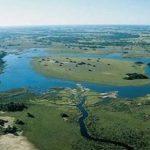zanonokavango-delta.jpg