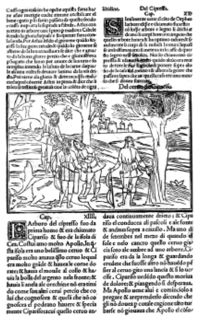 Figura 3  Ovidio,