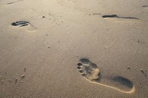 piedi Laura de Luca